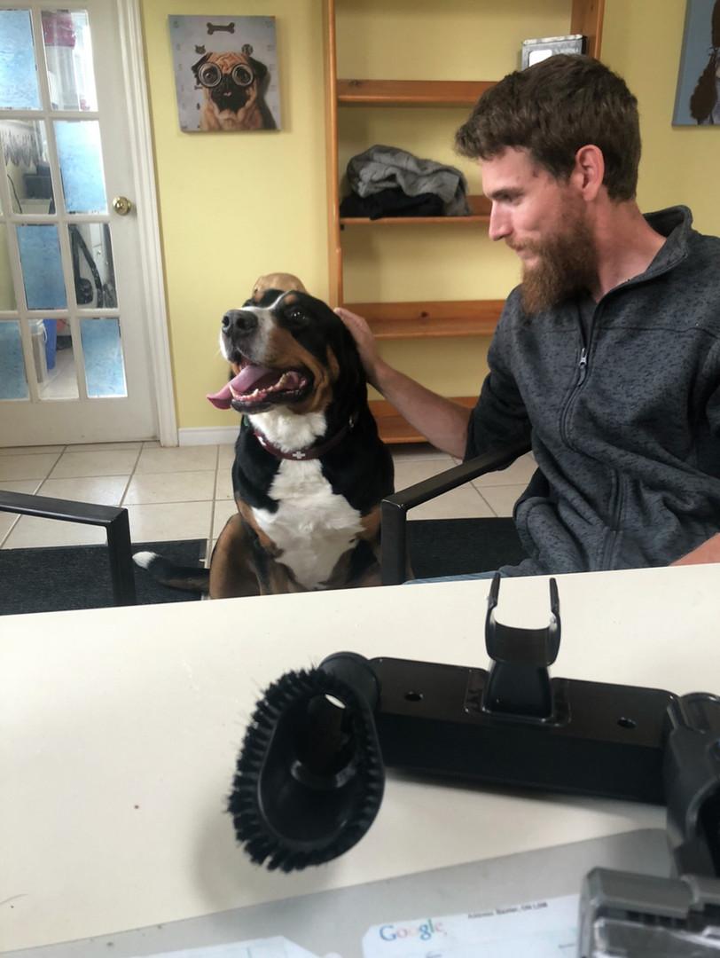 dog/cat boarding business