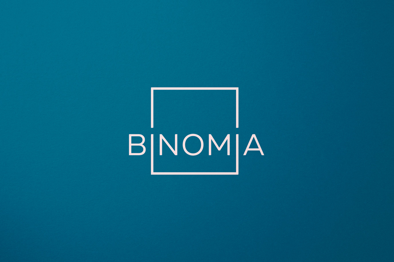 04-BINOMIA_MOCKUP.jpg