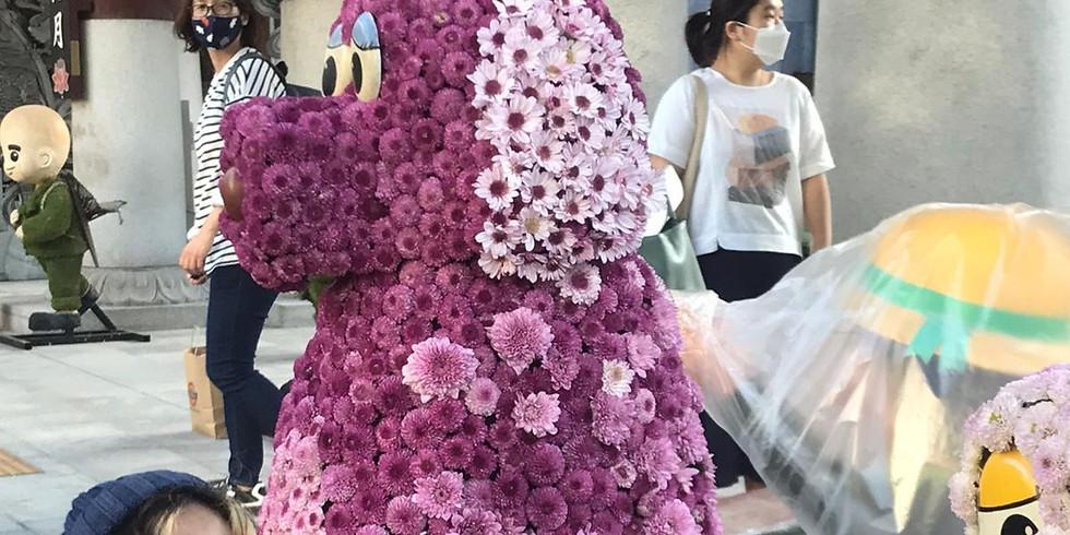 Tour Insadong, Ikseondong and visit Jogyesa Temple Chrysanthemum Festival, 6 Oct 2020