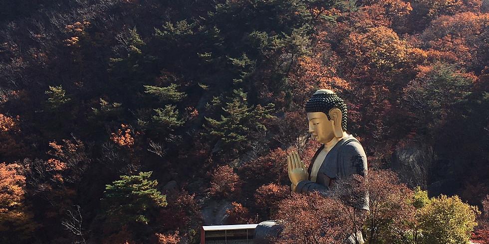 WALKIE TALKIE: Golden Buddha, Bukhansan National Park. Time: 9.45-13.45. Members free, non-Members 10,000 KRW