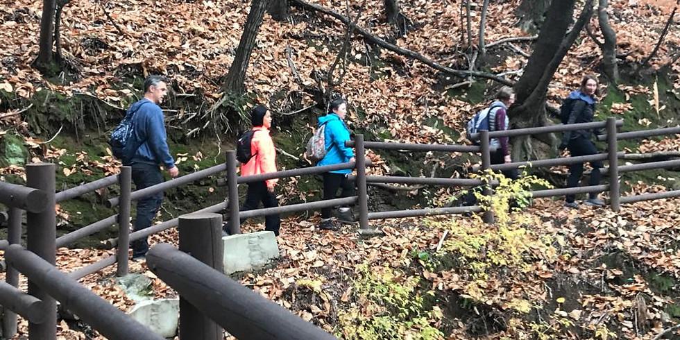 WALKIE TALKIE HIKE, Wed 18 Nov, Namsan Park