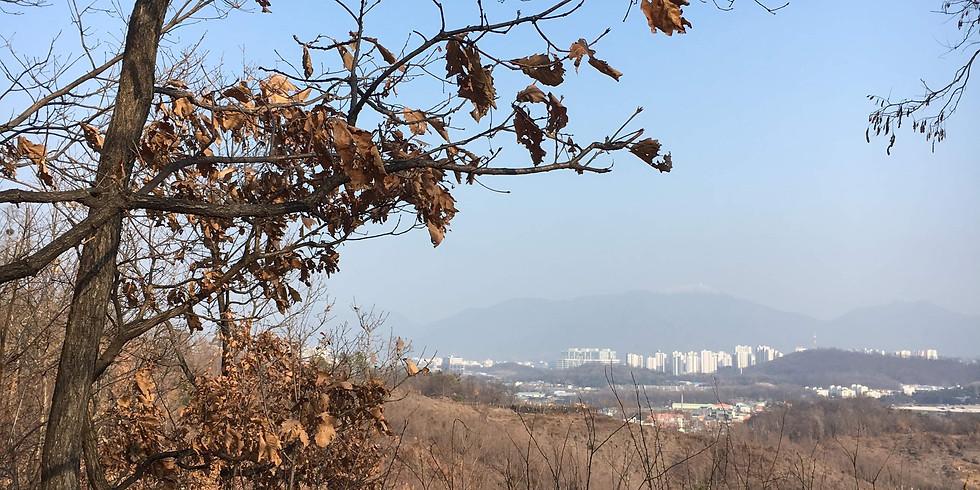 WALKIE TALKIE-Mt Iljasan, Seoul Trail, section 3, part 2. TIME: 10.00-12.30. (Members free, non-Members 10,000 KRW)