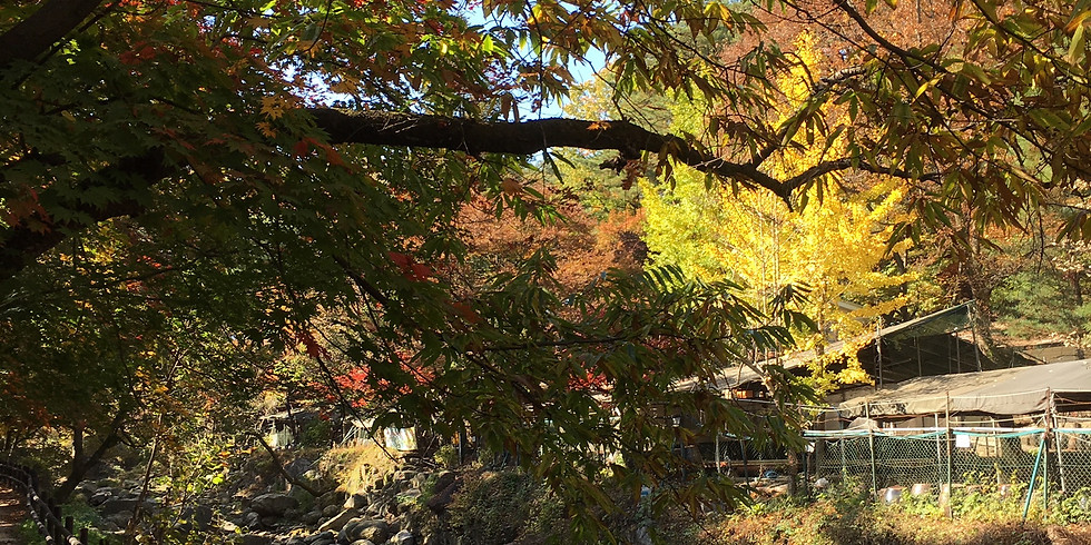WAlKIE TALKIE-Mt Bukhansan, Seoul Trail section 8, part 4. Time 9.45-13.30. (Members free, non-Members 10,000 KRW)