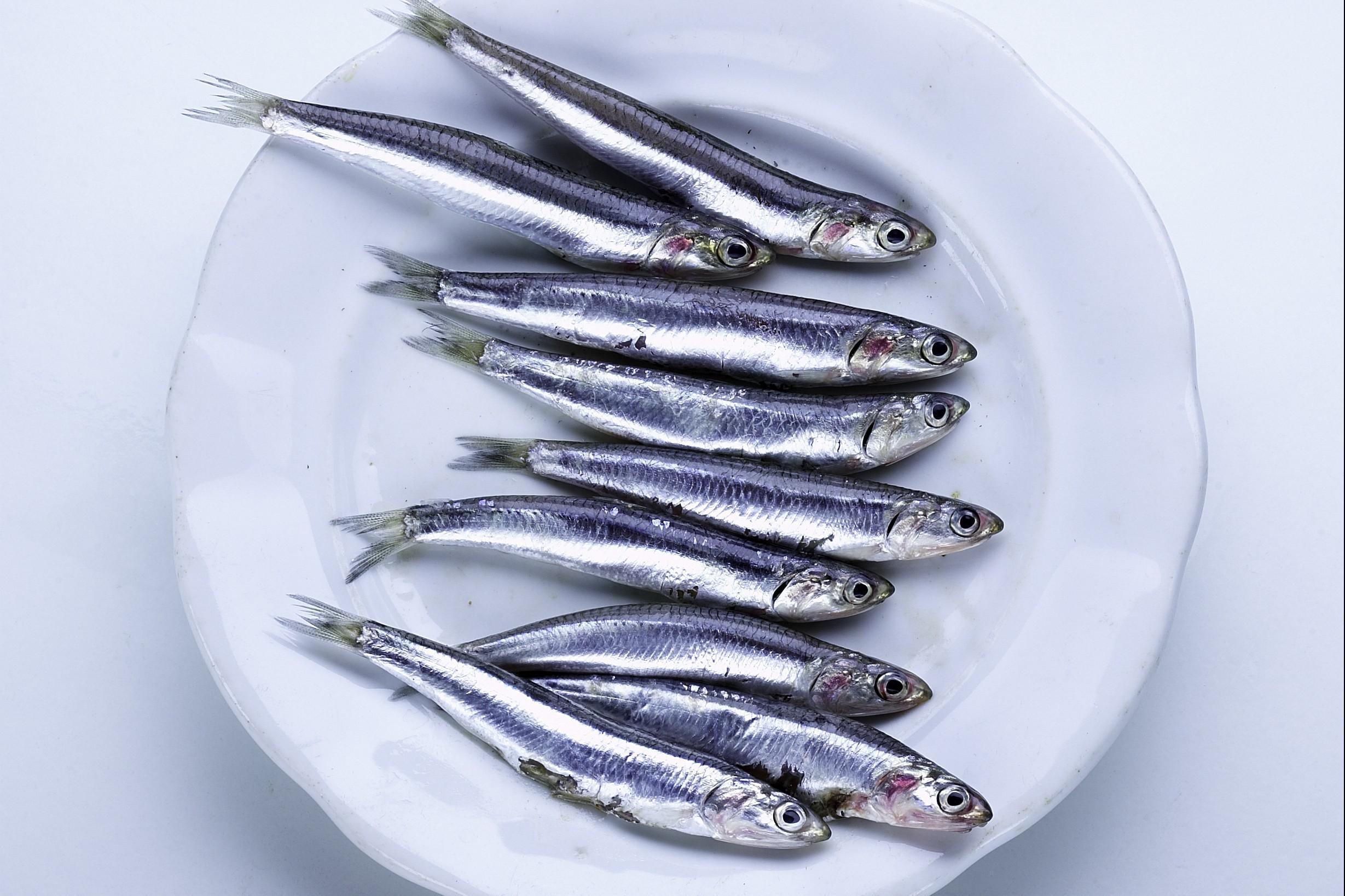 come-cucinare-il-pesce-azzurro_2e708c8dbc956ef476a3de0e8887c3f5