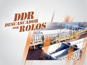 DDR - Descascador por Rolos