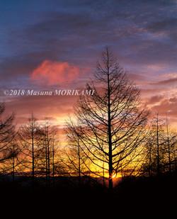 02 一片の雲/愛知県豊根村/2010.1.23 6:59