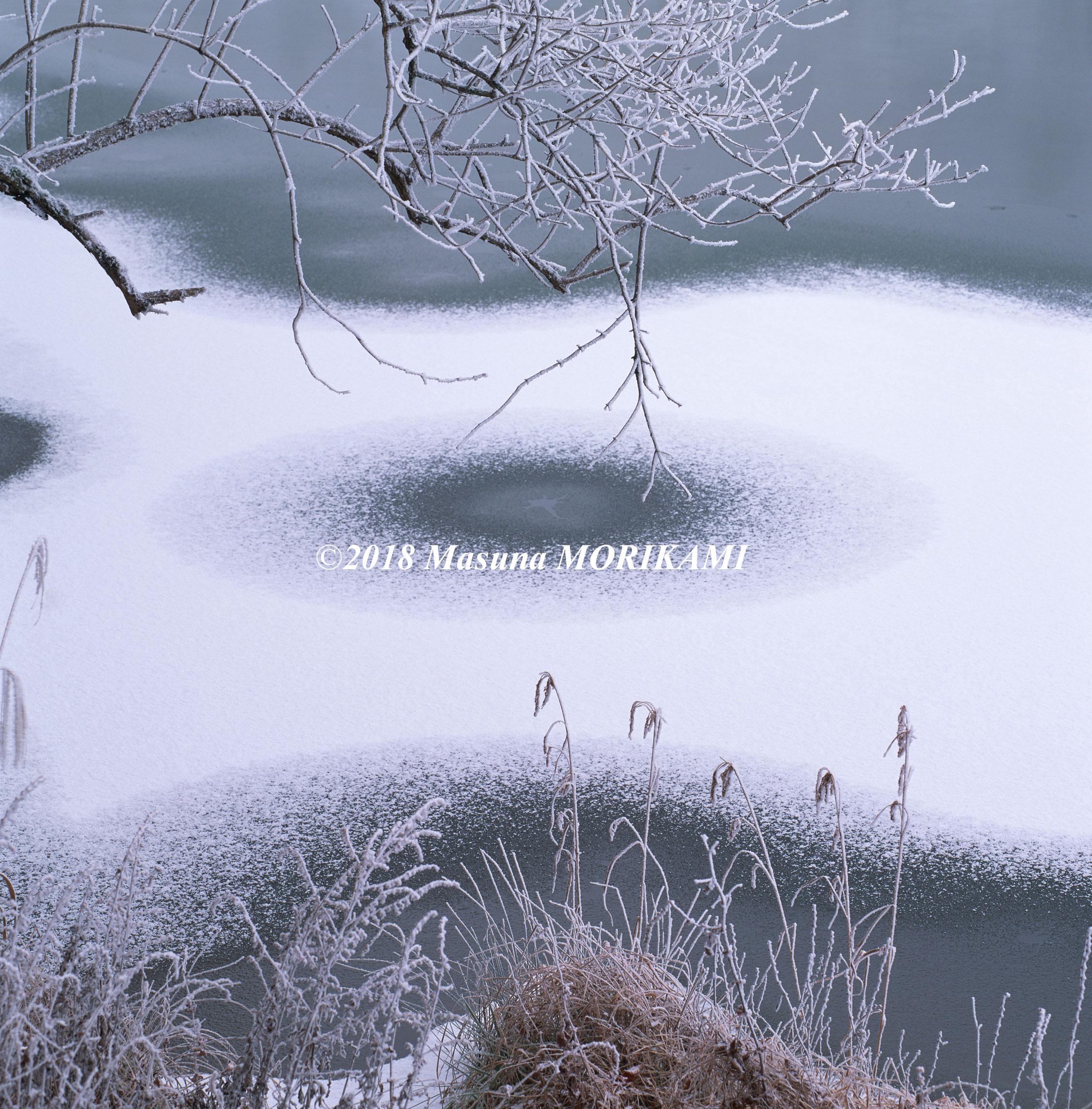 26 白い紋様/愛知県豊根村/2011.12.18 8:23