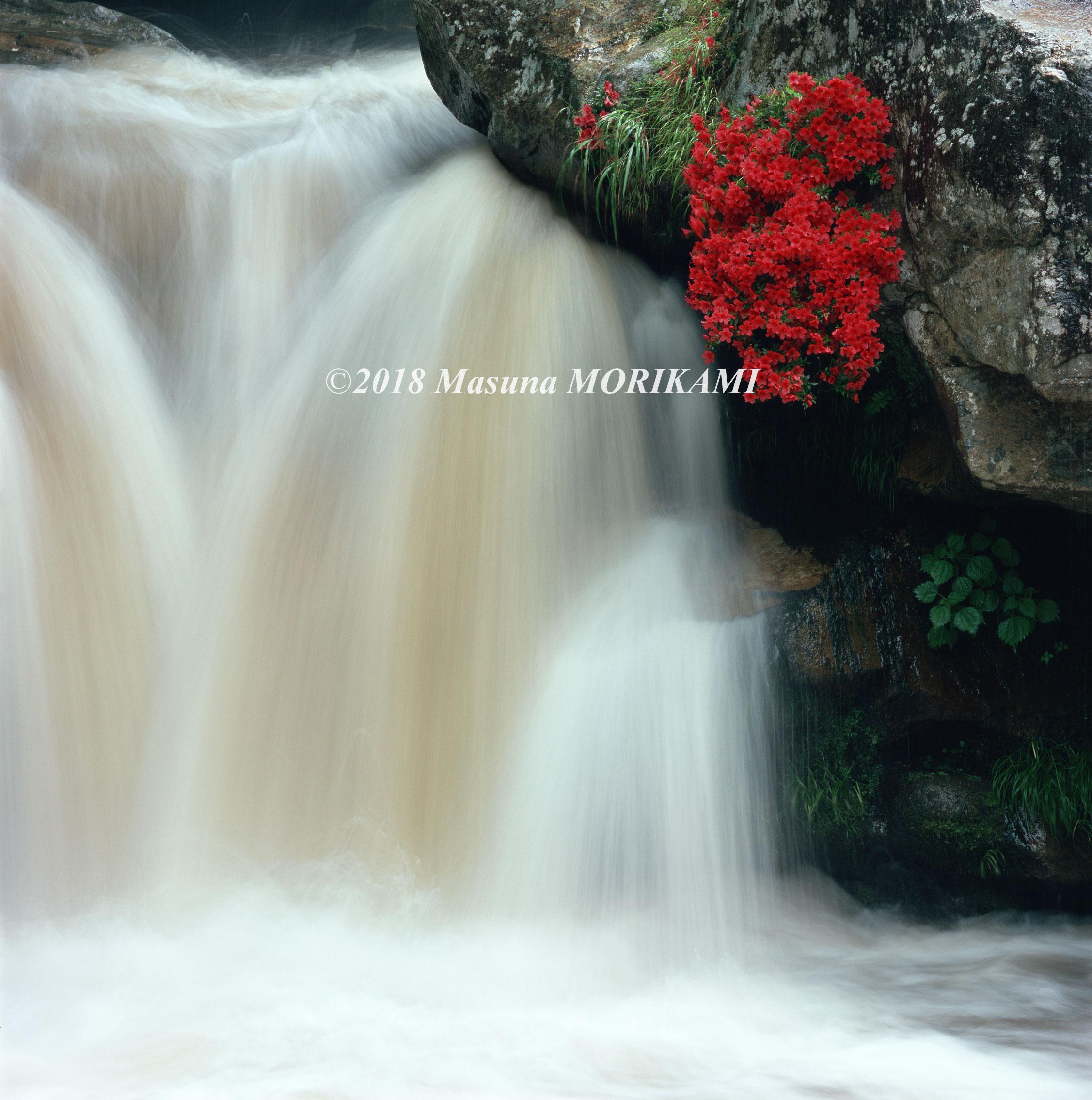 05 朱色の滝かざり/長野県根羽村/2006.7.9 11:50