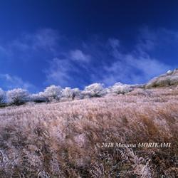 24 風雲渡る/長野県根羽村/2006.12.3 8:14