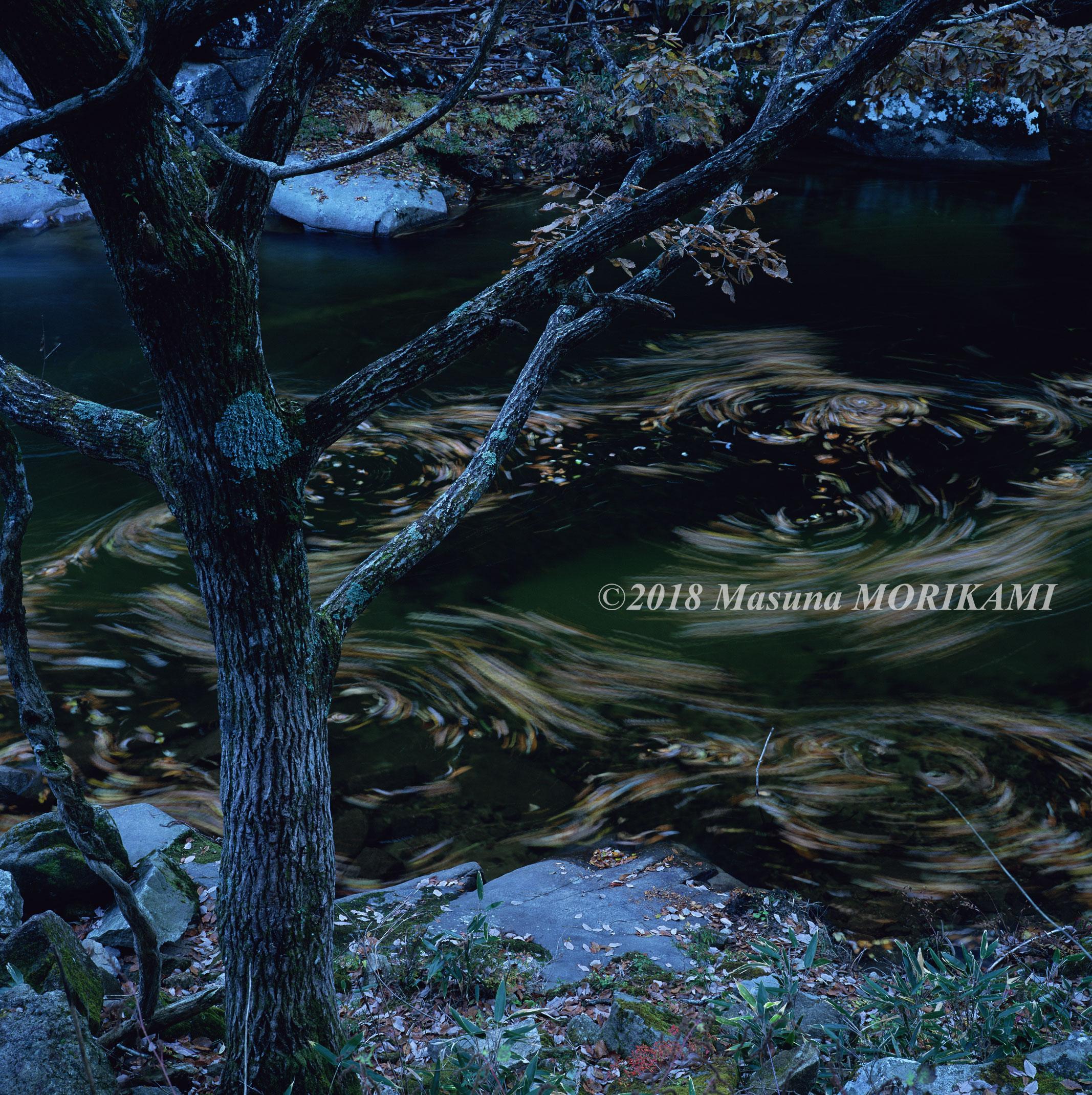 19 流れのままに/長野県根羽村/2005.11.12 15:11