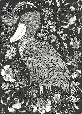 Shoebill in the Garden