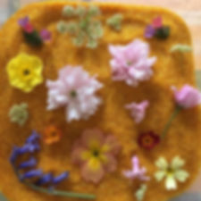 Preserving flowers in silica crystals.