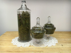 Glass Apothecary Containers