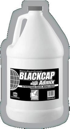 Blackcap.png