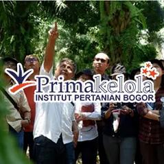 Primakelola IPB