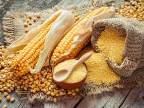 inovasi pengganti beras untuk pengidap diabetes