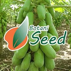 PT Botani Seed