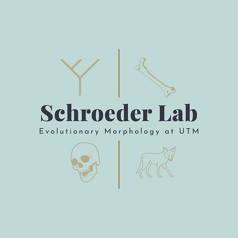 Schroeder Lab Logo