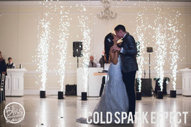 Fresno DJ Wedding Bliss Events Group COL