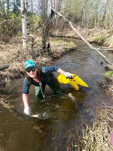 Suzanne Swartz Little Cambpbell Creek 5-