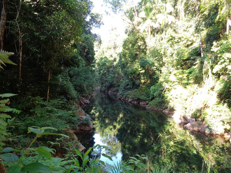 Tapi Gorge in Sumatra