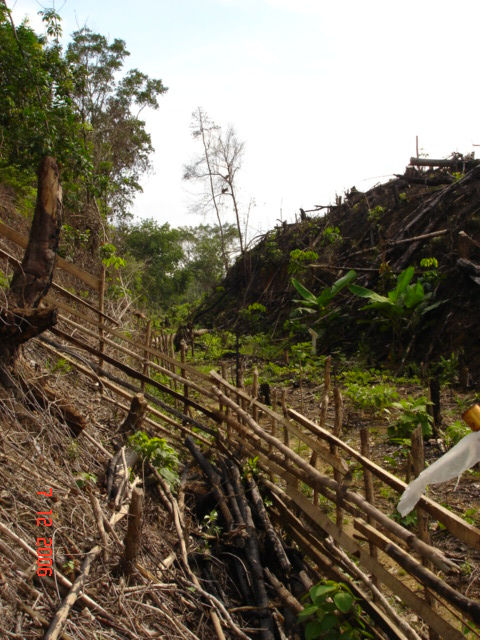 Pekanbaru Death Railway Cutting near Kota Baru