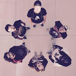 irie lions members circle - drone.jpg