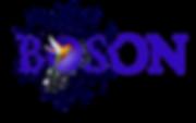 Boson Association, Logo Boson, Boson
