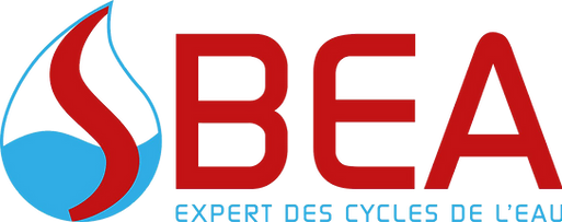 FORMAT STANDART_SBEA Logo.png
