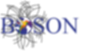 logo boson.png