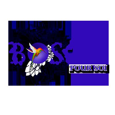 logo-boson-pour-soi.png
