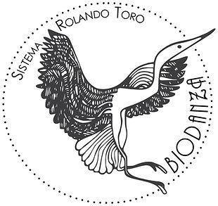 Logotipo da Biodanza Sistema Rolando Toro