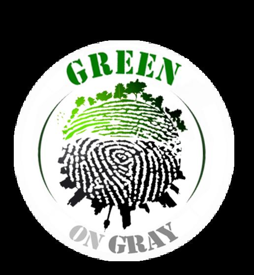 Analia Bordenave green on gray