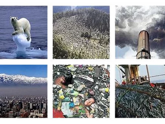 Más de 15.000 científicos de todo el mundo plantean 13 medidas urgentes para salvar el planeta.