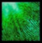 Analia Bordenave Mark Art photoluminescence