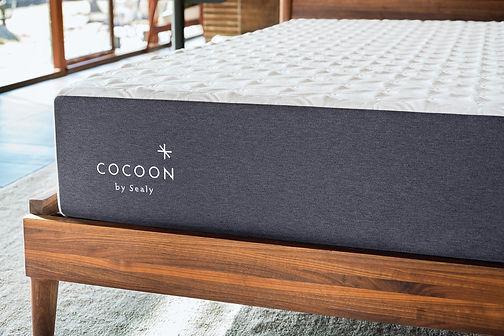 Cocoon-Mattress.jpg