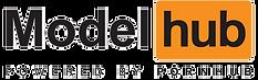 ModelHub clear logo