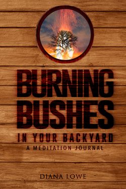 Burning Bushes Front Cover- Final