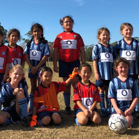 Under 8 Royal Blue Match Report - 27 May 2018