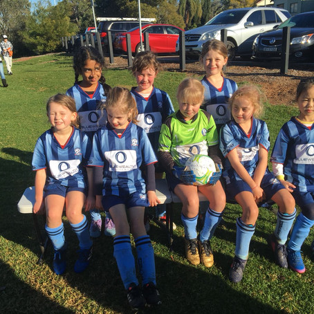 U8 Royal Blue Match Report - 24 June 2018