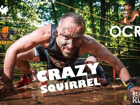 Crazy Squirrel OCR