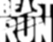 Бист ран лого на фото.png