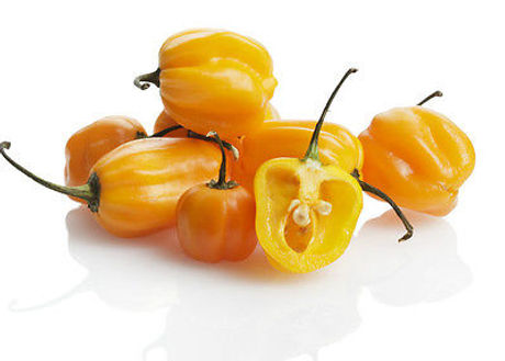 Habanero Yellow.jpg