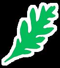 leaf white border.tif