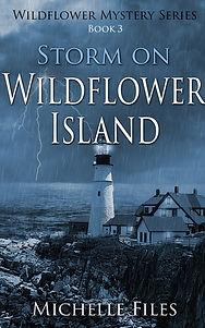 mystery, thriller, island, murder, suspense, young adult novel