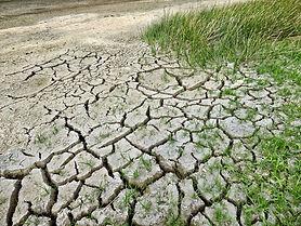 I cambiamenti climatici- un rischio da n