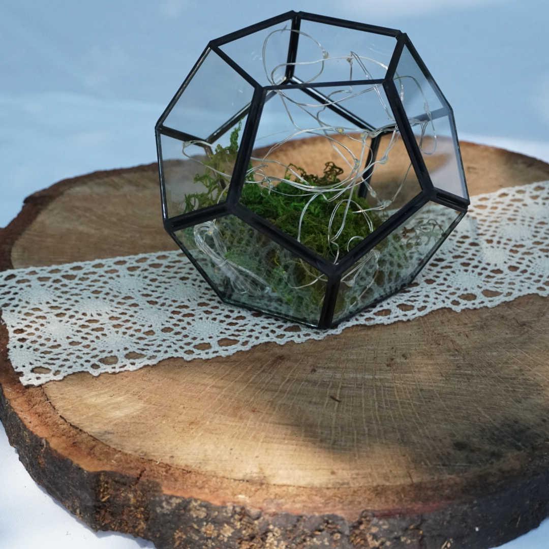 Airplant & Wood Round Centerpiece