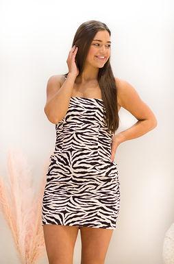 Zebra Gone Wild