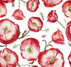Poppies Poppies Poppies  ©Sandie Turchyn