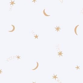 sterren en manen 300_sterren en manen _edited.jpg